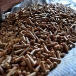 Cómo reducir contaminación en La Araucanía