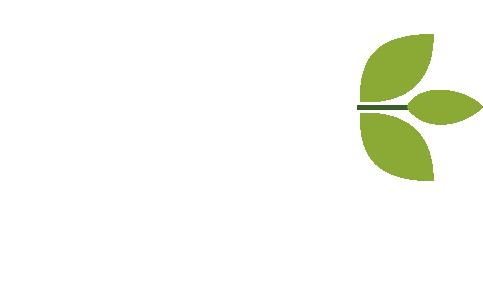 Serrago Consultores